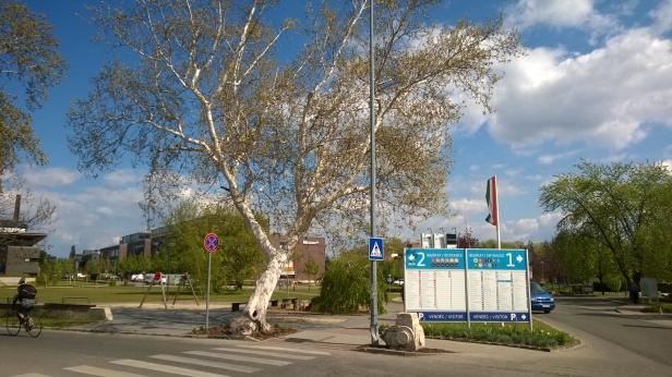 graphisoft-park